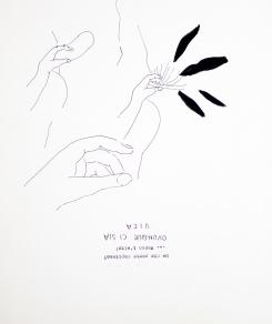 disegni natura 3 (2 di 10)